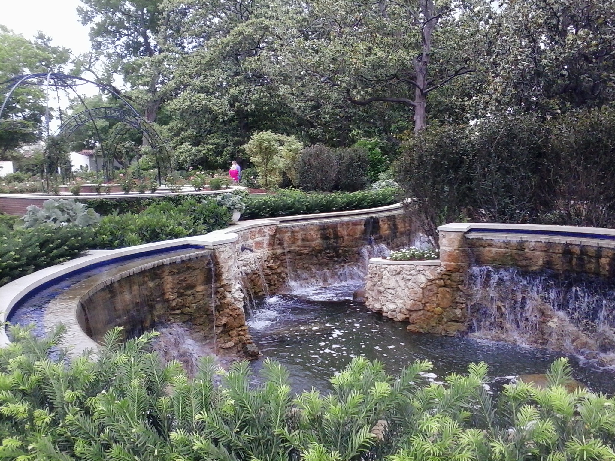 More waterfall pond in the Nancy Clements Seay Magnolia Glade.